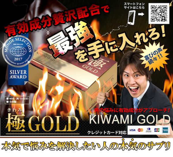 精力剤 極GOLD